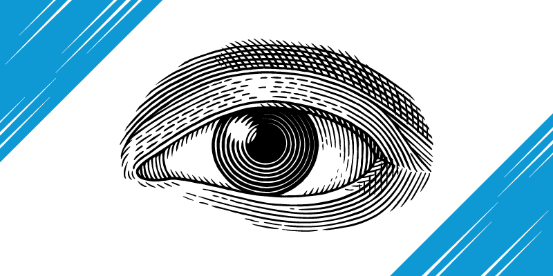 10 Little Known Facts About the Human Eye